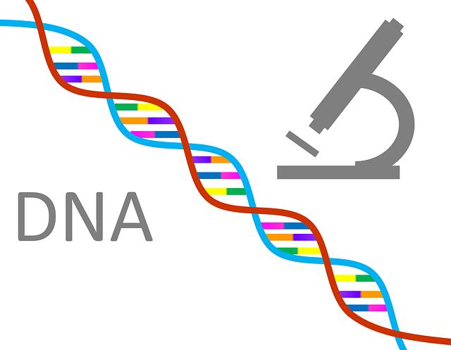 Test de enfermedades genéticas recesivas