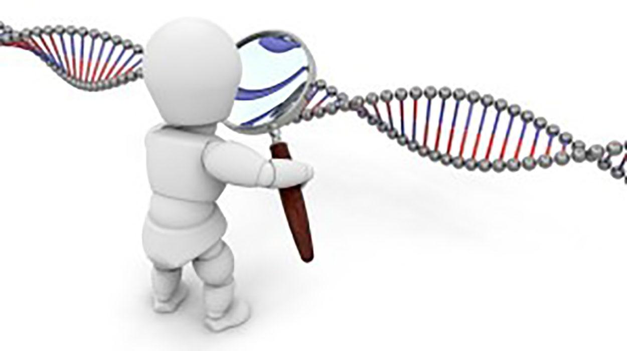 ¿Qué es el Diagnóstico Genético Preimplantacional?¿Sirve para evitar abortos?