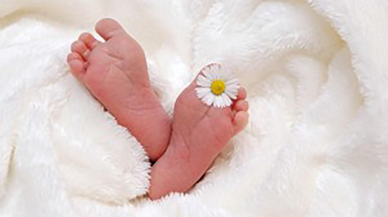 Realizar inseminación artificial y día de ovulación