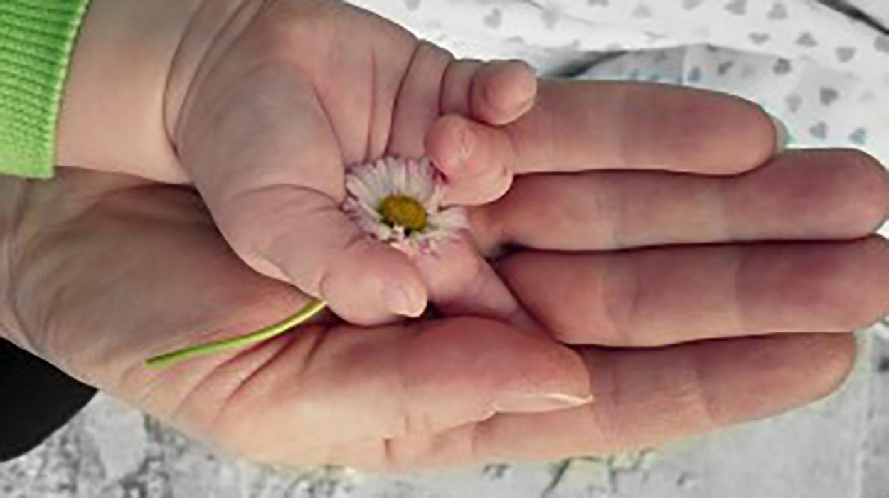 ¿Influye la vitamina D en la fertilidad?