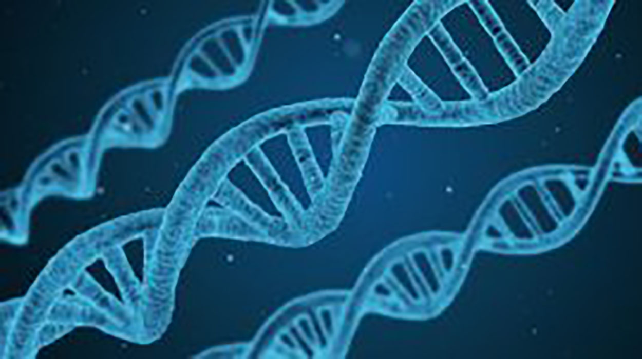 What are the recessive genetic diseases?
